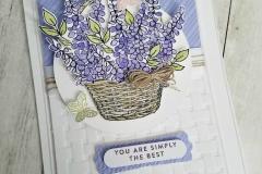 04-01-18 Lavender front Update